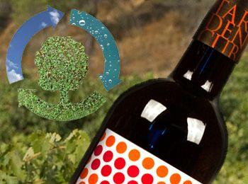Tardencuba commitment to organic wine